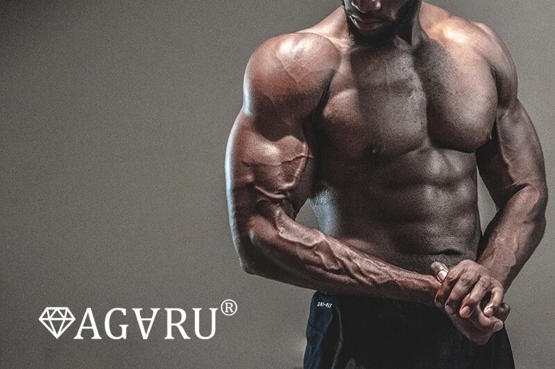 バーベルライイングトライセプスエクステンションで鍛えられる筋肉