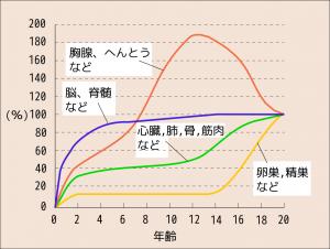 スキャモン発育発達曲線