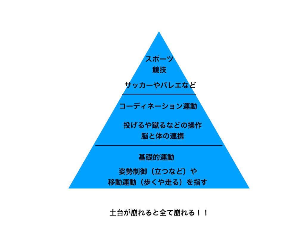 運動のピラミッド